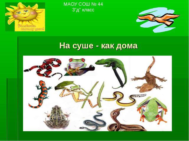 "На суше - как дома МАОУ СОШ № 44 3""д"" класс"