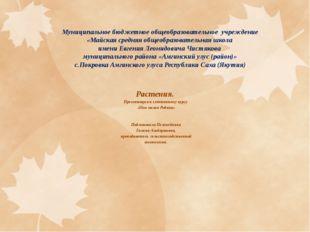 Муниципальное бюджетное общеобразовательное учреждение «Майская средняя общео