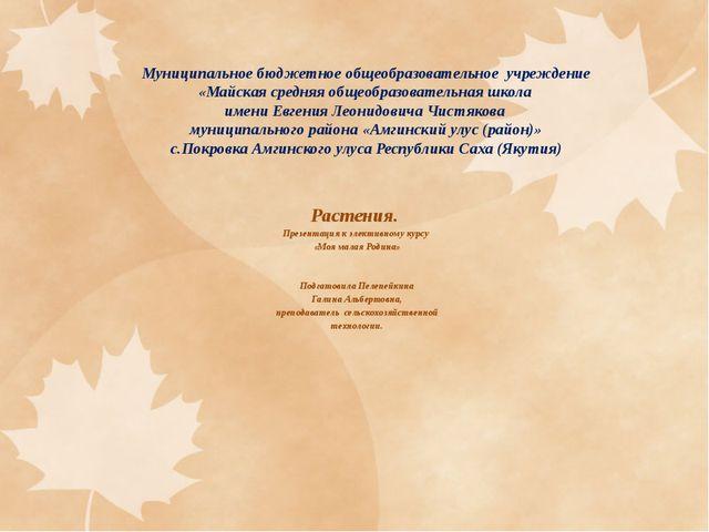 Муниципальное бюджетное общеобразовательное учреждение «Майская средняя общео...