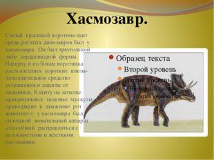 Самый красивый воротник-щит среди рогатых динозавров был у хасмозавра. Он был