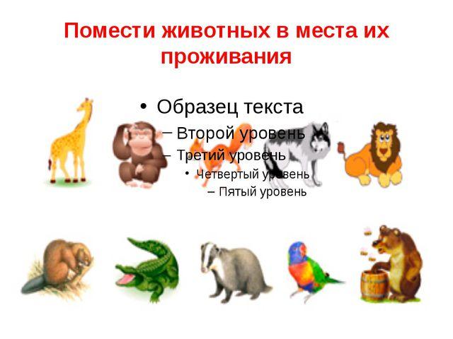 Помести животных в места их проживания