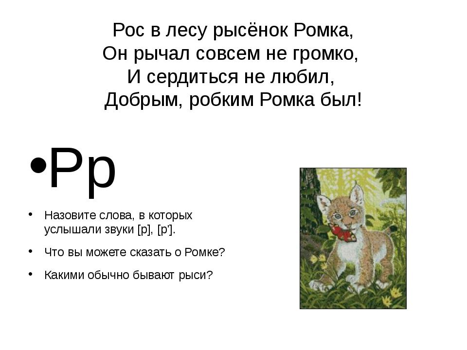 Рос в лесу рысёнок Ромка, Он рычал совсем не громко, И сердиться не любил, До...