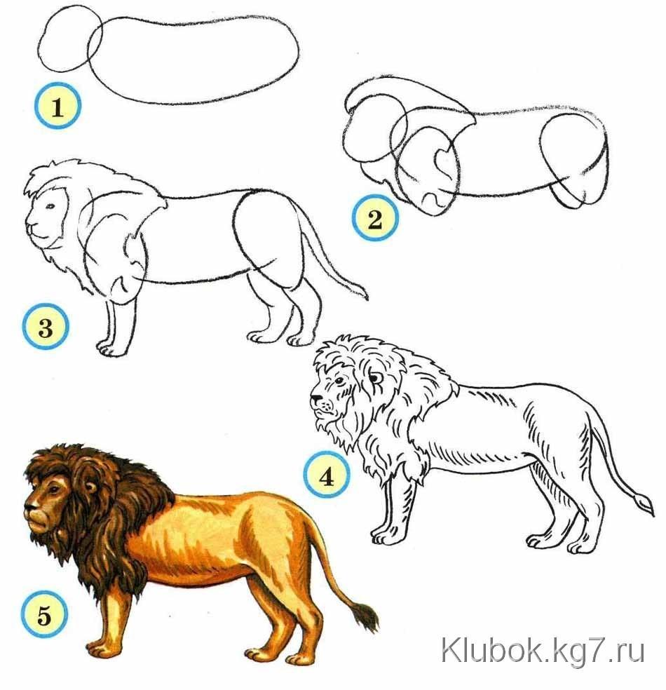 http://klubok.kg7.ru/14/93/images/items/2147/p_9364.jpg