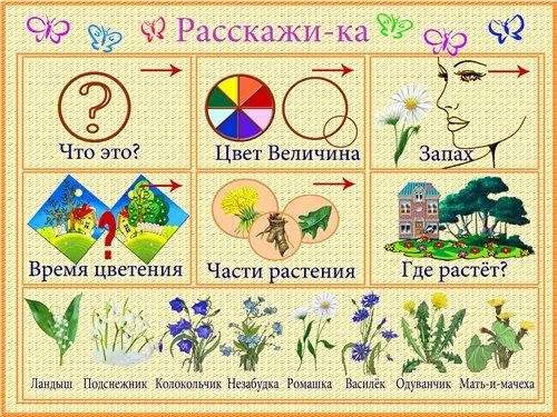 http://s013.radikal.ru/i323/1103/7c/eaa828ef1a32.jpg