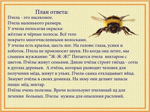 http://i003.radikal.ru/1101/5d/b4937a21fa36.jpg