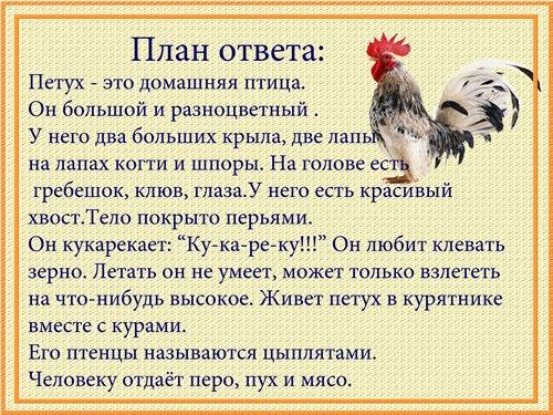 http://s007.radikal.ru/i301/1101/2d/8b462c2fdb3b.jpg