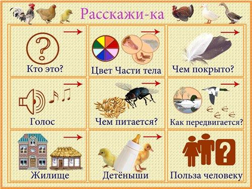 http://i021.radikal.ru/1101/c6/2343642274f6.jpg