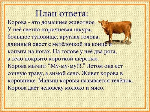 http://s16.radikal.ru/i190/1101/16/99c51630c5ab.jpg