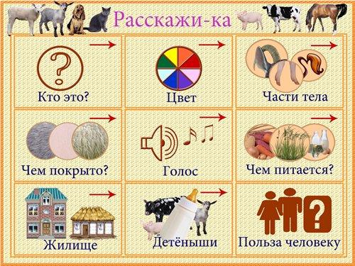 http://s010.radikal.ru/i313/1101/65/9236e9e74a6c.jpg