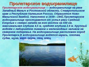 Пролетарское водохранилище Пролетарское водохранилище — водохранилище на реке