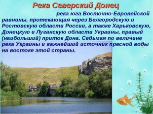Река Северский Донец Се́верский Доне́ц река юга Восточно-Европейской равнины,