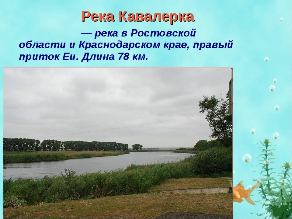 Река Кавалерка Кавале́рка — река в Ростовской области и Краснодарском крае, п...
