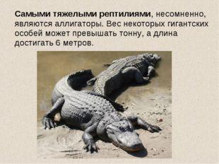 Самыми тяжелыми рептилиями, несомненно, являются аллигаторы. Вес некоторых г