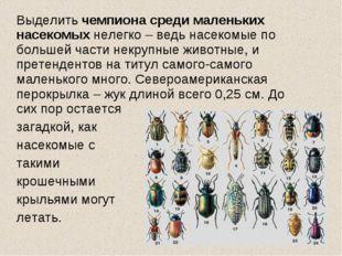 Выделить чемпиона среди маленьких насекомых нелегко – ведь насекомые по боль