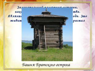 Замечательный памятник истории, находящийся под охраной государства. Являетс