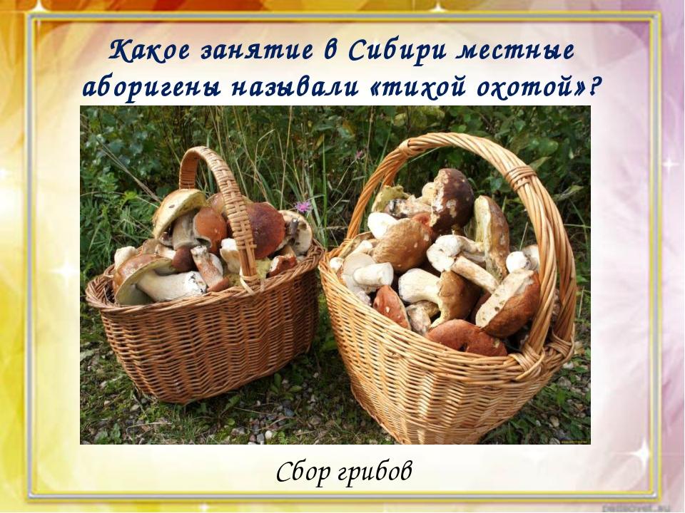 Какое занятие в Сибири местные аборигены называли «тихой охотой»? Сбор грибов