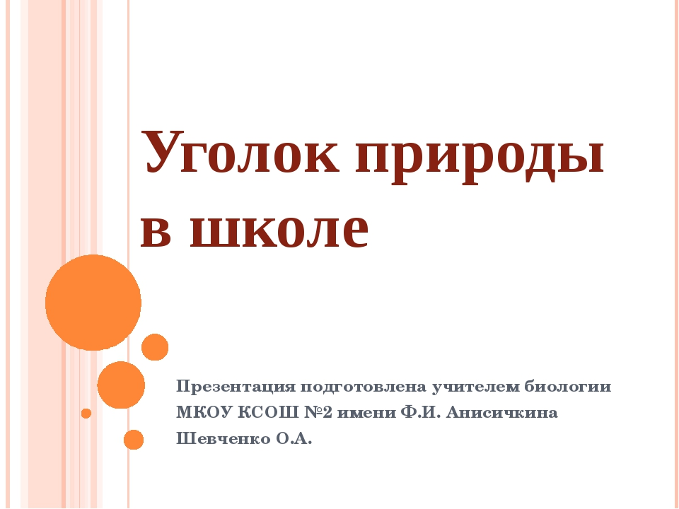 Презентация подготовлена учителем биологии МКОУ КСОШ №2 имени Ф.И. Анисичкин...
