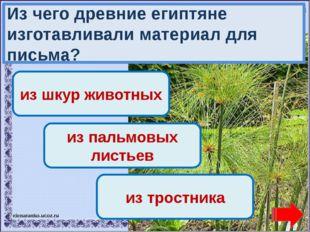 Переход хода! Переход хода! из шкур животных из пальмовых листьев Молодец! из