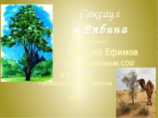 Саксаул и Рябина 4-В класс Руководитель: М.Н. Амосова 2015 (сказка-шутка) Дми