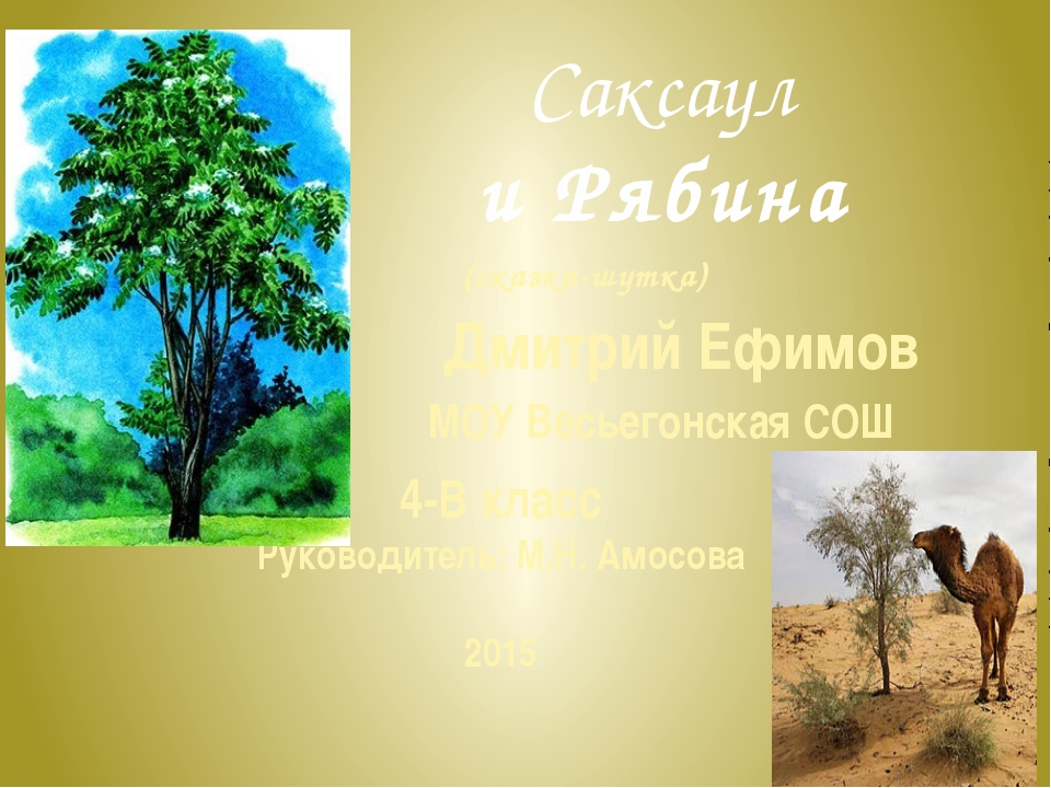 Саксаул и Рябина 4-В класс Руководитель: М.Н. Амосова 2015 (сказка-шутка) Дми...