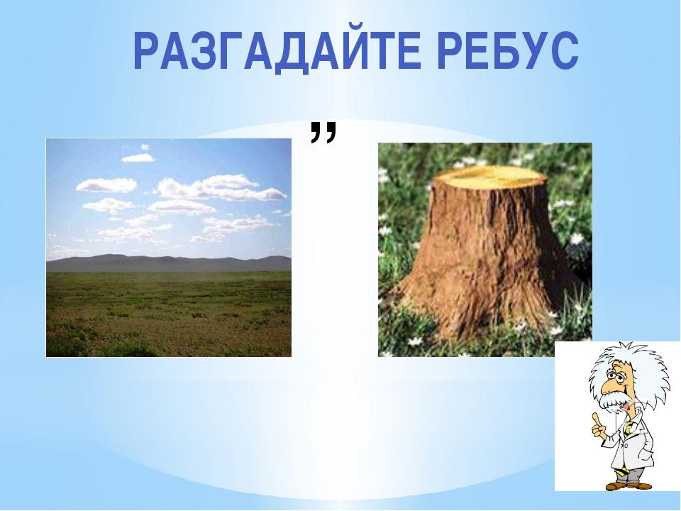 ,, РАЗГАДАЙТЕ РЕБУС