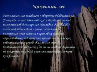 Каменный лес Расположен на западном побережье Мадагаскара. Площадь составляет