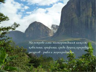На острове есть месторождения никеля, кобальта, графита, среди других природн