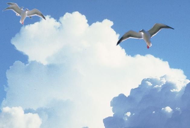 F:\ДИСК D\Картинки\Небо\Облака.BMP