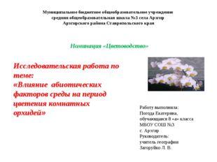 Работу выполнила: Погода Екатерина, обучающаяся 8 «а» класса МБОУ СОШ №3 с. А
