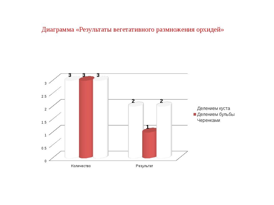 Диаграмма «Результаты вегетативного размножения орхидей»