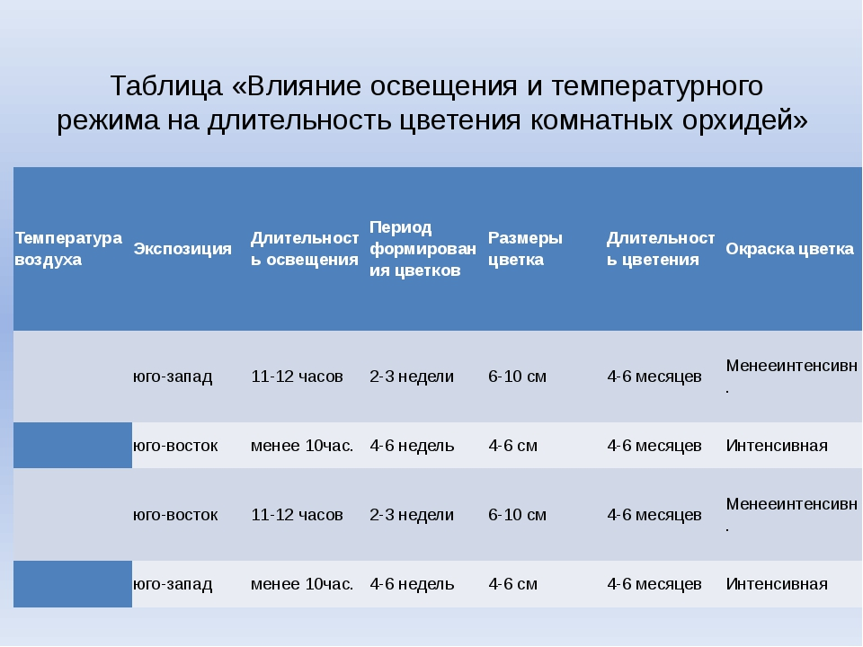 Таблица «Влияние освещения и температурного режима на длительность цветения...