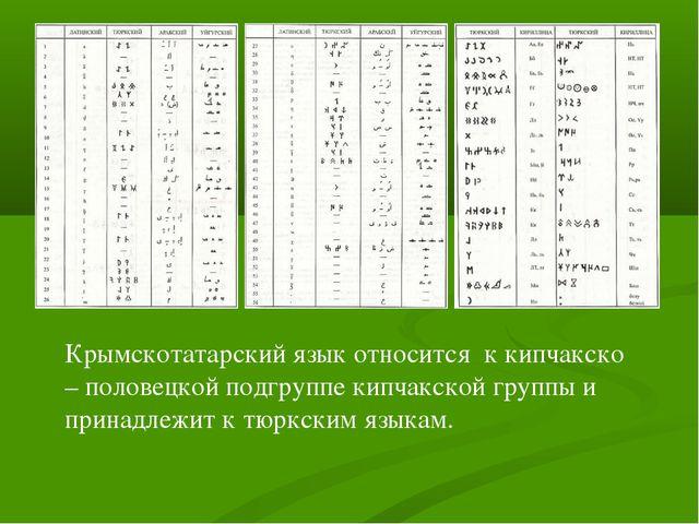 Крымскотатарский язык относится к кипчакско – половецкой подгруппе кипчакской...