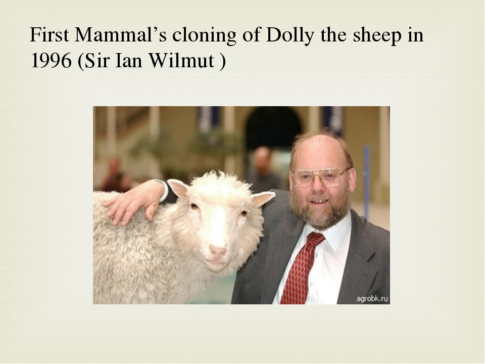 the cloning of dolly sheep