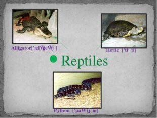 Reptiles Alligator['ælɪgeɪtə] Python ['paɪθ(ə)n] Turtle ['tɜːtl]