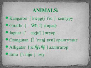 ANIMALS: Kangaroo [ˌkæŋg(ə)'ruː] кенгуру Giraffe [ʤɪ'rɑːf] жираф Jaguar ['ʤæ