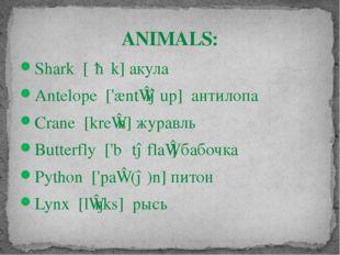 ANIMALS: Shark [ʃɑːk] акула Antelope ['æntɪləup] антилопа Crane [kreɪn] жура