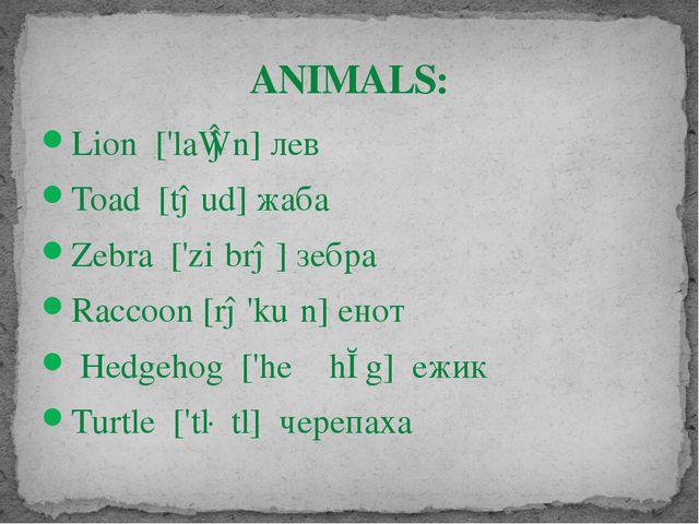 Lion ['laɪən]лев Toad [təud]жаба Zebra ['ziːbrə] зебра Raccoon [rə'kuːn] ен...