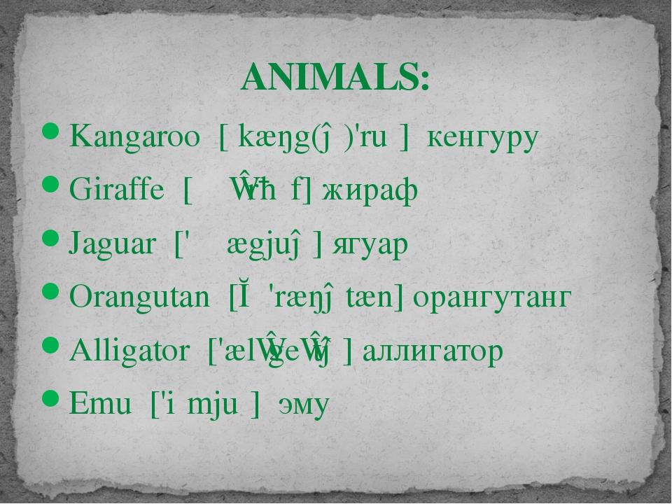 ANIMALS: Kangaroo [ˌkæŋg(ə)'ruː] кенгуру Giraffe [ʤɪ'rɑːf] жираф Jaguar ['ʤæ...