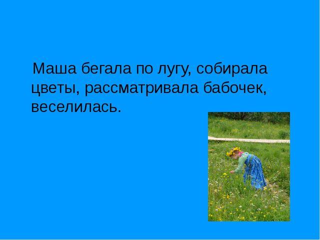 Маша бегала по лугу, собирала цветы, рассматривала бабочек, веселилась.