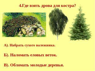 4.Где взять дрова для костра? А). Набрать сухого валежника. Б). Наломать ело