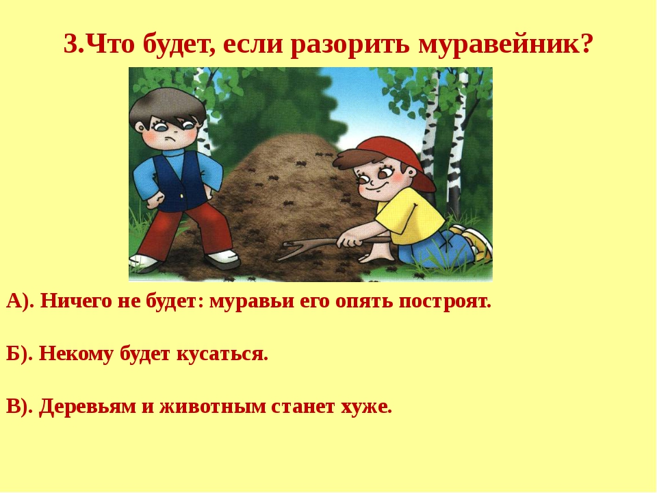 3.Что будет, если разорить муравейник? А). Ничего не будет: муравьи его опят...