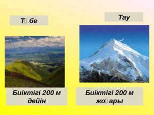 Төбе Тау Биіктігі 200 м дейін Биіктігі 200 м жоғары
