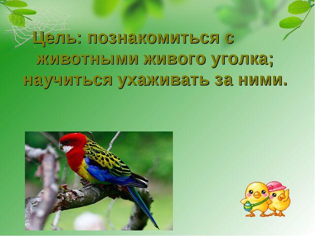 Цель: познакомиться с животными живого уголка; научиться ухаживать за ними.