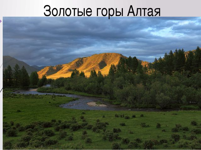 Золотые горы Алтая
