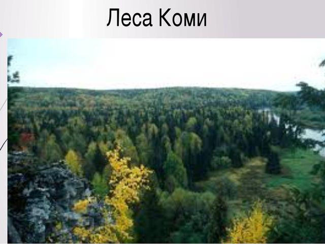 Леса Коми