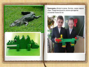 Крокодилы обитают в реках, болотах, озерах жарких стран. Продолжительность жи