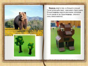 Медведь живет в лесу, он большой и сильный. Густая теплая шуба темно - корич