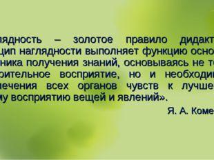 «Наглядность – золотое правило дидактики… Принцип наглядности выполняет функц