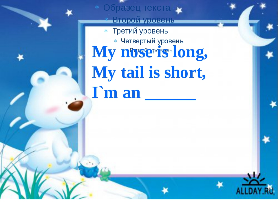 My nose is long, My tail is short, I`m an ______