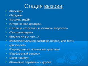 Стадия вызова: «Кластер» «Загадка» «Корзина идей» «Отсроченная догадка».
